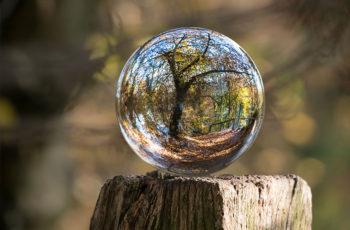 Fókuszban a környezetvédelem