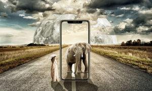 iPhone újdonságok: Mit várhatunk idén az iphone-októl